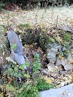 Foto záznam č. 10231 - Pod lesem