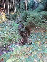 Foto záznam č. 10254 - Horecký potok