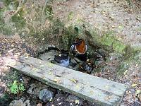 Foto záznam č. 9088 - U Koňského rybníka