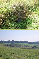 Foto záznam č. 9113 - Bečovský potok
