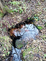 Foto záznam č. 9330 - Pod Vodojemem