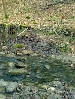 Foto záznam č. 9343 - U skaly