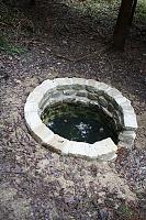 Foto záznam č. 9561 - V Černém lese