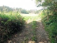 Foto záznam č. 9607 - U Úterského potoka