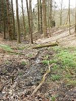 Foto záznam č. 9732 - Nad Německými loukami