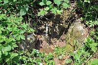 Foto záznam č. 9899 - Pod lesem