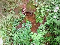 Foto záznam č. 9942 - Za Lesy
