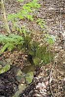 Foto záznam č. 9952 - Pod dubem