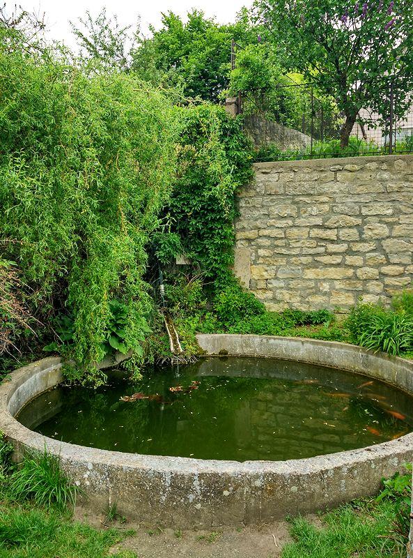 jiný vodní zdroj Máchadlo u sv. Václava (11328)