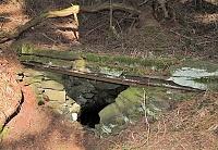 Foto záznam č. 10506 - Lesní studánka