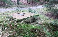 Foto záznam č. 10544 - Nový Lesní 2