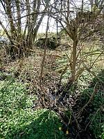 Foto záznam č. 10588 - Horní studna