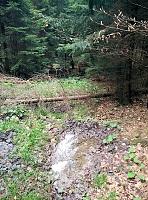 Foto záznam č. 10604 - Nad Křivolickou cestou 2.