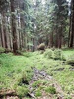 Foto záznam č. 10794 - Stříbrnický potok 2