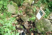 Foto záznam č. 11085 - Pod kamenným svahem