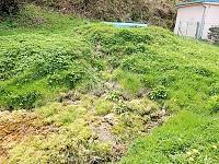 Foto záznam č. 11300 - U rybníka