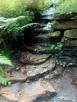 Foto záznam č. 11533 - V Arboretu