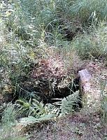 Foto záznam č. 11553 - Pod Vráží