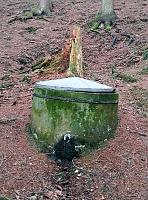 Foto záznam č. 11781 - Táborová studánka