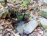 Foto záznam č. 12007 - Nižní Kamenitý