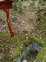 Foto záznam č. 12087 - Helenčina studánka