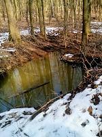 Foto záznam č. 12464 - Zelené očko