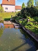 Foto záznam č. 12629 - Nad rybníčkem