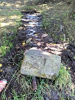 Foto záznam č. 12630 - Studánka nad řekou