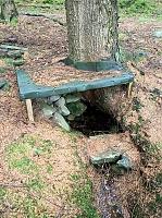 Foto záznam č. 12699 - Pod stromem