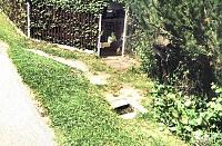 Foto záznam č. 12787 - Čuráček