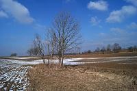 Foto záznam č. 12808 - Špinka