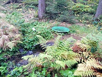 Foto záznam č. 13035 - Lesní studánka