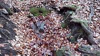 Foto záznam č. 13122 - Lojzova studánka