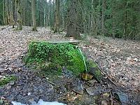 Foto záznam č. 13262 - Bedřichovský pramen