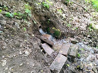 Foto záznam č. 13393 - Olšinecký pramen