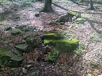 Foto záznam č. 13433 - U Jelení chaty