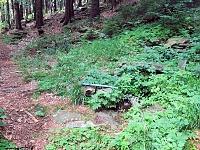 Foto záznam č. 13435 - U Horní Bremsberské boudy